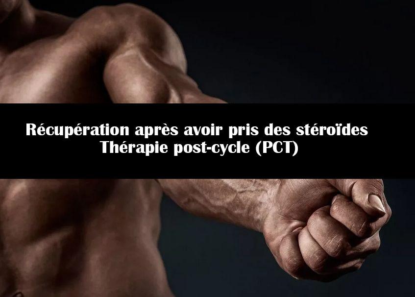 Récupération après avoir pris des stéroïdes   Thérapie post-cycle (PCT)